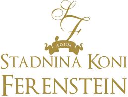 Szkolenie specjalistyczne licencyjne dla szkoleniowców z Krzysztofem Ferensteinem (dyscyplina B)